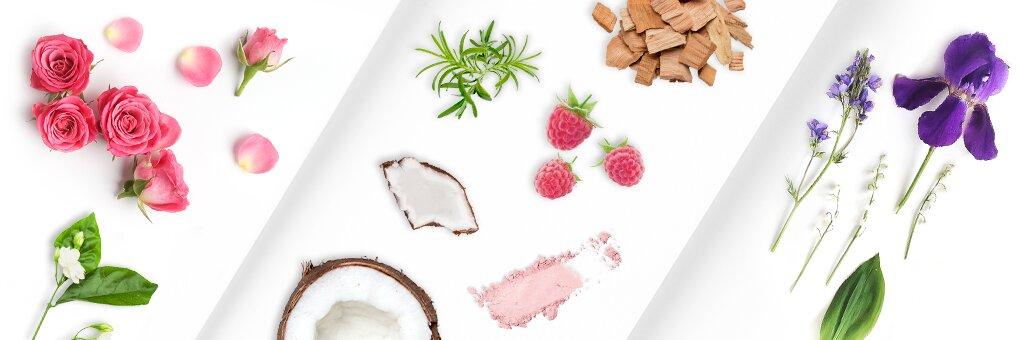 Composants des parfums