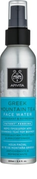 Apivita Express Beauty Greek Mountain Tea Gesichtswasser im Spray