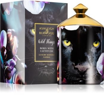 Ashleigh & Burwood London Wild Things Born With Cattitude duftkerze