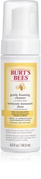 Burt's Bees Skin Nourishment mousse detergente illuminante per pelli normali e miste
