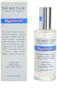 Demeter Clean Windows kolínska voda unisex
