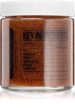 Detox Skinfood Key Ingredients čisticí pleťový peeling
