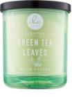 DW Home Green Tea Leaves vonná sviečka