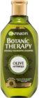 Garnier Botanic Therapy Olive hranilni šampon za suhe in poškodovane lase