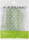 Yasumi Konjak Aloe Vera spugnetta detergente delicata per pelli secche e sensibili