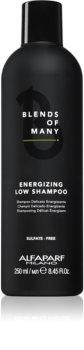 Alfaparf Milano Blends of Many Energizing Shampoo für sanfte und müde Haare
