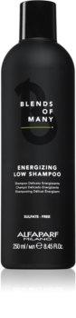 Alfaparf Milano Blends of Many energizující šampon pro jemné a zplihlé vlasy