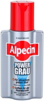 Alpecin Power Grau Hiustenpesuaine Hiusten Harmauden Korostamiseen