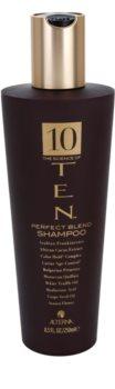 Alterna Ten champú nutritivo para renovar y fortificar el cabello  sin sulfatos