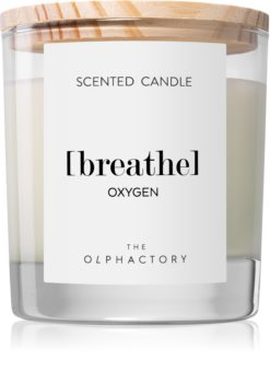 Ambientair Olphactory Oxygen bougie parfumée (Breathe)