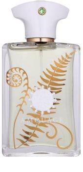 Amouage Bracken parfumovaná voda pre mužov