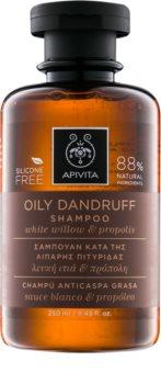 Apivita Holistic Hair Care White Willow & Propolis sampon anti-matreata pentru par gras