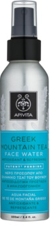 Apivita Express Beauty Greek Mountain Tea Gezichtswater in Spray
