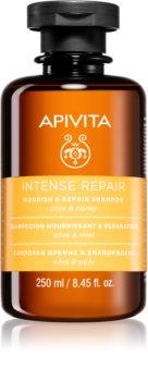 Apivita Holistic Hair Care Olive & Honey интензивен подхранващ шампоан