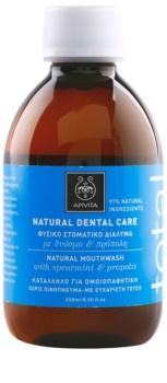 Apivita Natural Dental Care Total στοματικό διάλυμα