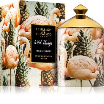 Ashleigh & Burwood London Wild Things Pinemingos candela profumata (Coconut & Lychee)