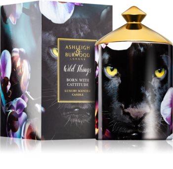 Ashleigh & Burwood London Wild Things Born With Cattitude duftkerze