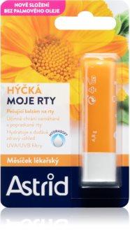 Astrid Lip Care восстанавливающий бальзам для губ с календулой аптечной