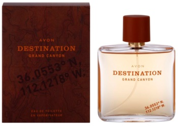 Avon Destination Grand Canyon eau de toilette per uomo