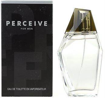 Avon Perceive for Men Eau de Toilette Miehille