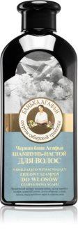 Babushka Agafia Herbal Tincture Purifying Shampoo With Plant Extract
