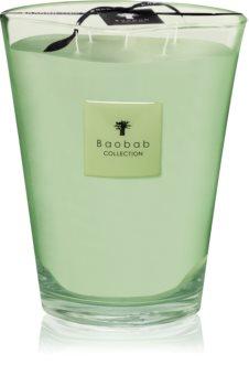 Baobab Modernista Vidre Poetry ароматна свещ