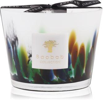 Baobab Rainforest Amazonia lumânare parfumată
