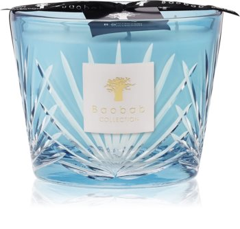 Baobab Palm West Palm scented candle