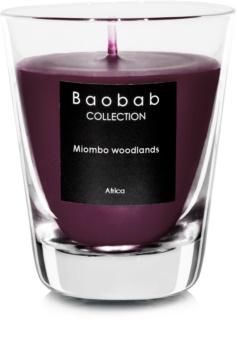 Baobab Miombo Woodlands lumânare parfumată  (votive)