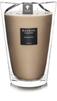 Baobab All Seasons Serengeti Plains bougie parfumée