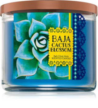 Bath & Body Works Baja Cactus Blossom scented candle