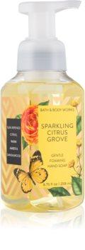 Bath & Body Works Sparkling Citrus Groove αφρώδες σαπούνι για τα χέρια