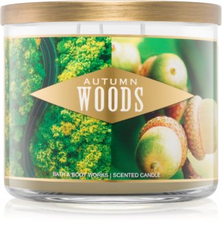 Bath & Body Works Autumn Woods scented candle III