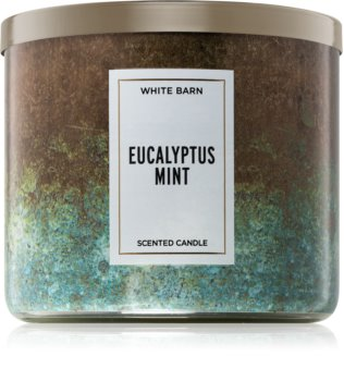 Bath & Body Works Eucalyptus Mint scented candle II.