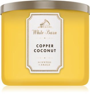 Bath & Body Works Copper Coconut scented candle I.