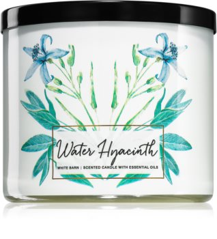 Bath & Body Works Water Hyacinth vela perfumada