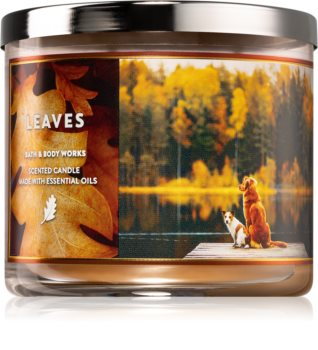 Bath & Body Works Leaves scented candle IV.