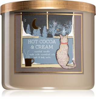 Bath & Body Works Hot Cocoa & Cream scented candle IV.