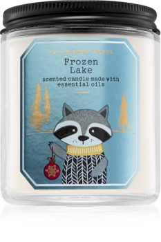 Bath & Body Works Frozen Lake scented candle I.