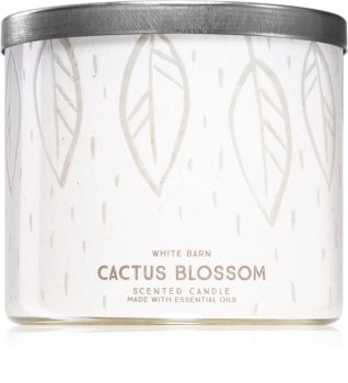 Bath & Body Works Cactus Blossom scented candle I.