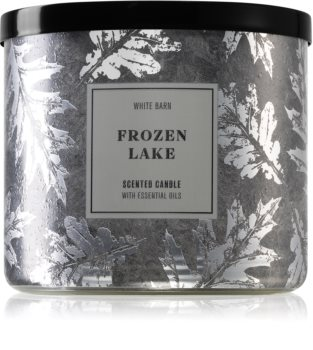 Bath & Body Works Frozen Lake bougie parfumée II.