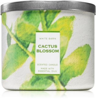 Bath & Body Works Cactus Blossom scented candle With Essential Oils