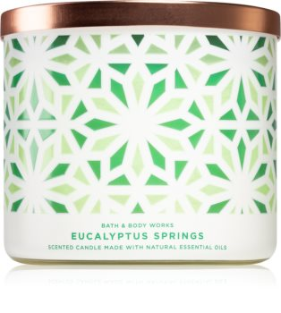Bath & Body Works Eucalyptus Springs scented candle