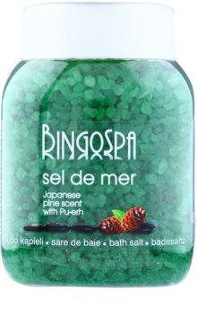 BingoSpa Japanese Pine Scent & Pu-erh mořská sůl do koupele