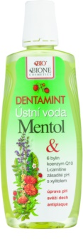 Bione Cosmetics Dentamint vodica za usta