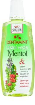 Bione Cosmetics Dentamint рідина для полоскання  рота