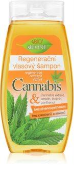 Bione Cosmetics Cannabis відновлюючий шампунь