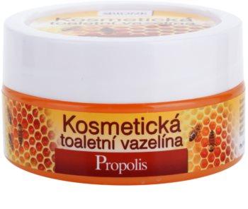 Bione Cosmetics Honey + Q10 Kosmeettinen Vaseliini