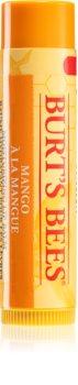 Burt's Bees Lip Care balsam de buze nutritiv
