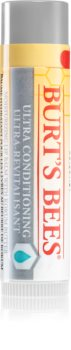 Burt's Bees Lip Care Balsam für trockene Lippen